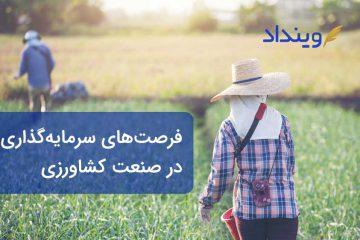 فرصتهای سرمایهگذاری در کشاورزی و نکات آن