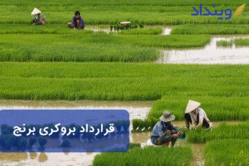 قرارداد بروکری برنج